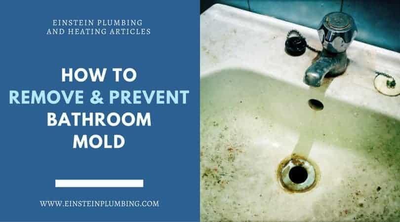 bathroom mold